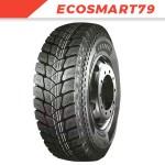 ECOSMART79