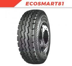 ECOSMART81